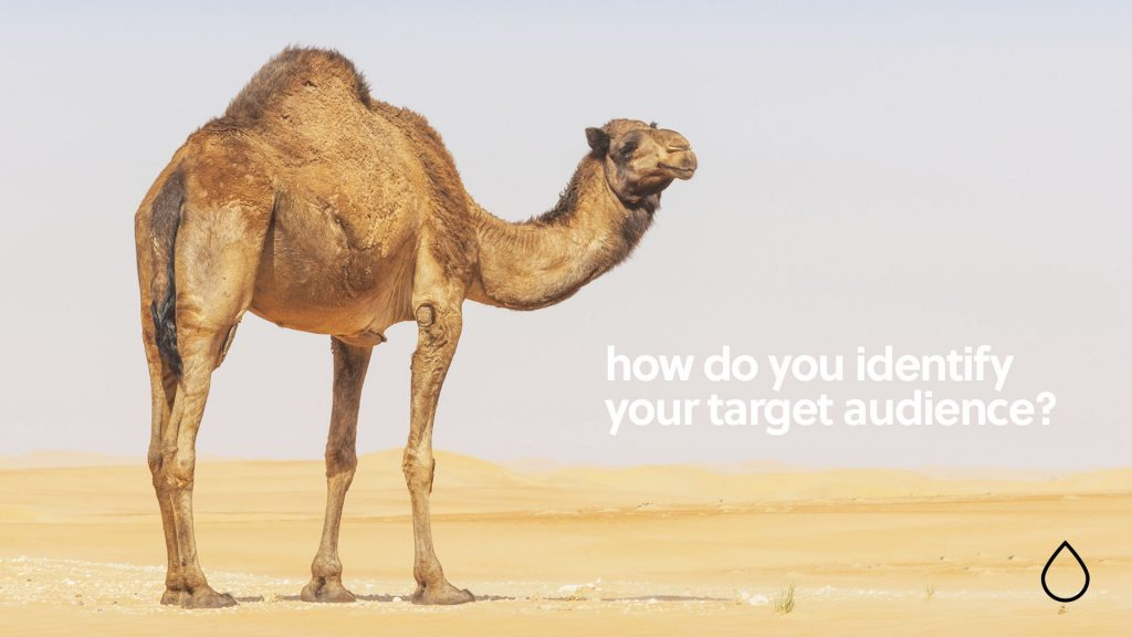 How do you identify your target audience don't sell sand to a camel image